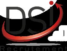 logo DSI.FR recrutement de dsi